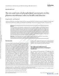 The ins and outs of phospholipid asymmetry in the plasma ...