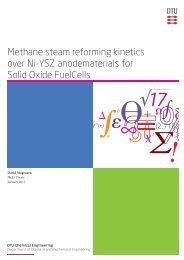 Methane steam reforming kinetics over Ni-YSZ ... - DTU Orbit