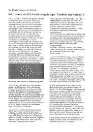 Wird durch die EU-Verfassung Europa