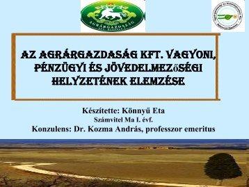 Az Agrárgazdaság Kft. vagyoni, pénzügyi és jövedelmezőségi ...