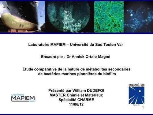 O - laboratoire PROTEE - Université du Sud - Toulon - Var