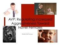 AVP: Regulating Increased Aggressiveness Toward Novel Females
