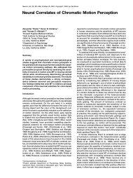 Neural Correlates of Chromatic Motion Perception - Staff.ncl.ac.uk