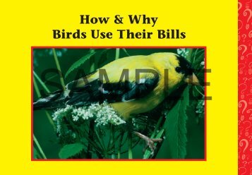 Download a PDF Sample of Birds Use Their - Rainbow Resource ...