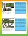 Basic Diorama Kit - Rainbow Resource Center - Page 3