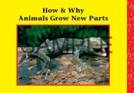 Download a PDF Sample of Animals Grow New Parts - Rainbow ...