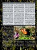Ammoniak - ein starkes Fischgift - Aquacare Gmbh & Co. KG - Seite 2