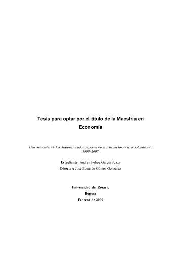 Tesis para optar por el título de la Maestría en Economía