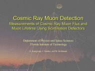 Measurements of Cosmic Ray Muon Flux and Muon Lifetime Using ...