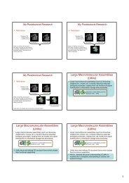 1 Large Macromolecular Assemblies (LMAs) Large Macromolecular ...