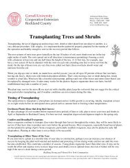 Transplanting Trees and Shrubs - Cornell Cooperative Extension of ...