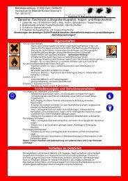 Bereiche: Flachdruck (Lithografie/Alugrafie), Kopier- und ...