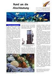 Rund um die Abschäumung - Aquacare Gmbh & Co. KG