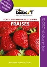 Bulletin d'information sur les cultures fraises