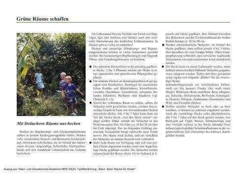 Sachgerechte Pflanzung und Gestaltung - Sichere Kita