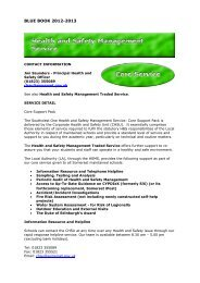 Health and Safety Management Service - Somerset County Council