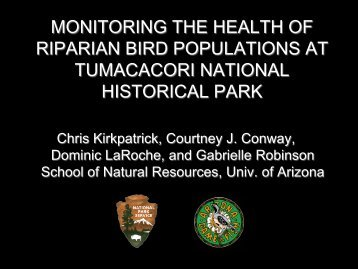 Monitoring the Health of Riparian Birds