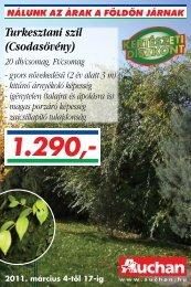 Turkesztani szil (Csodasövény) - Auchan