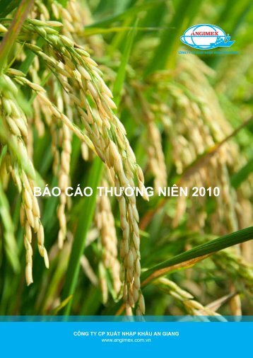 BÁO CÁO THƯỜNG NIÊN 2010 - công ty cp xuất nhập khẩu an giang