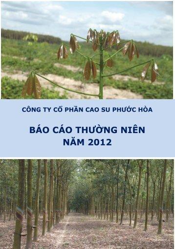 Bao cao thuong nien nam 2012 PHR - Vietstock