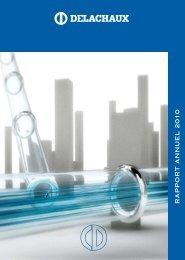 Rapport Financier Annuel 2010