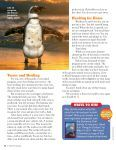 Nonfiction - Storyworks - Scholastic - Page 5