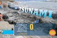 Surviving the Tsunami - Scholastic