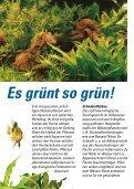Pflanzen pflanzen - Seite 2
