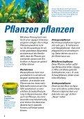Pflanzen pflanzen - Seite 4