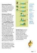 Pflanzen pflanzen - Seite 5
