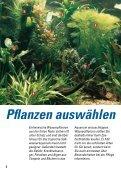 Pflanzen pflanzen - Seite 6