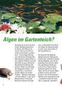 Algen im Gartenteich Algen im Gartenteich - Seite 2