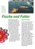 Teichfische und Futter Teichfische und Futter - Der Aquaristik-Laden - Seite 4