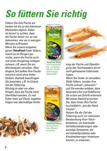 Teichfische und Futter Teichfische und Futter - Der Aquaristik-Laden