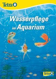 Wasserpflege im Aquarium Wasserpflege im Aquarium