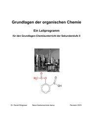 Grundlagen der organischen Chemie Ein Leitprogramm für den