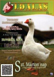 Oldalas magazin - Sokoldal.hu