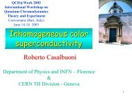 Inhomo - Florence Theory Group - Infn