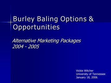 Alternative Market Packages - Tobacco Info Online