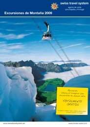 Excursiones Tren Suiza 2009 - Trenes Suiza