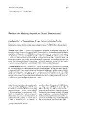 Revision der Gattung Amphidium (Musci ... - Tropical Bryology