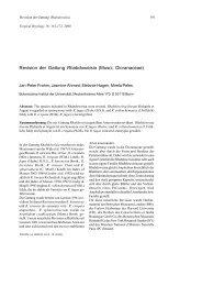 Revision der Gattung Rhabdoweisia (Musci, Dicranaceae)