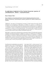 A preliminary treatment of the Central American species - Bryophyte ...
