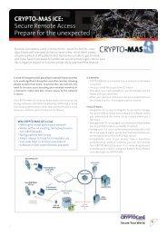CRYPTO-MAS ICE: Secure Remote Access Prepare for the ...