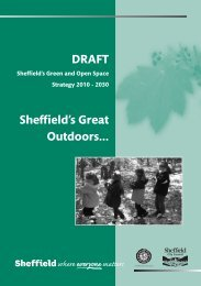 Sheffield's Green and Open Spaces Strategy - University of Sheffield