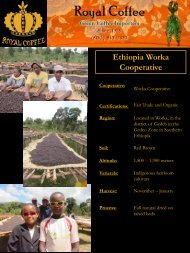 Ethiopia Worka Cooperative - Royal Coffee, Inc.