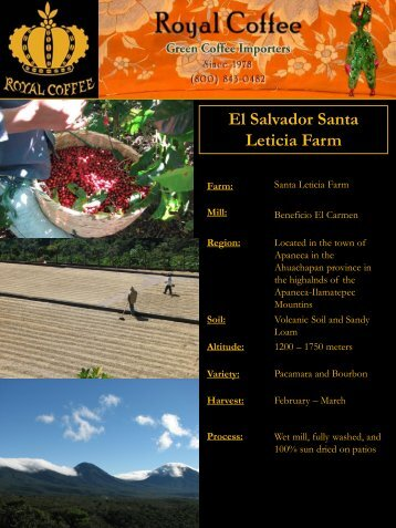 El Salvador Santa Leticia Farm - Royal Coffee, Inc.