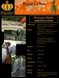 Nicaragua Dipilto (PRODECOOP) - Royal Coffee, Inc.