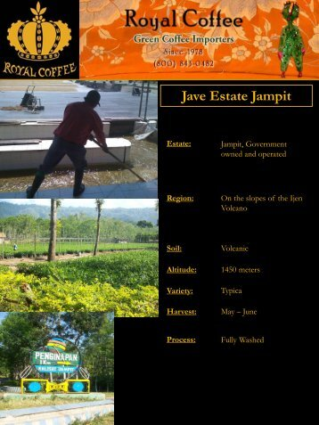 Jave Estate Jampit - Royal Coffee, Inc.
