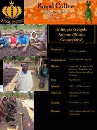 Ethiopia Gelgelu Adame (Worka Cooperative) - Royal Coffee, Inc.